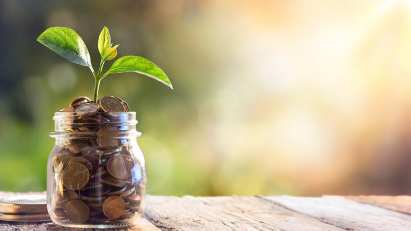 Lavori green: prime stime per un futuro sostenibile [Comunicato stampa lavoro Legambiente – Greenfactor]